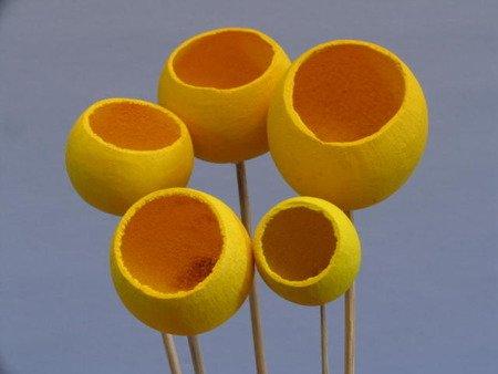 Bell cup żółty