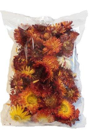 KOCANKA SUSZONA MIX ŻÓŁTO-RUDY (suchołuska, nieśmiertelnik) kwiaty suszone suszki dekoracyjne