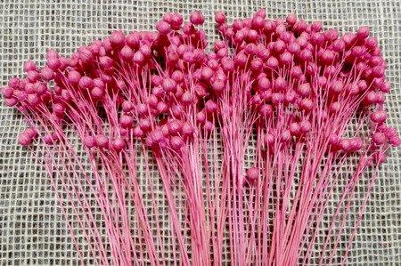LEN KOLOR RÓŻOWY suszony barwiony dodatek florystyczny pęczek 40 cm