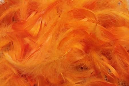Piórka dekoracyjne kolor ciemnopomarańczowy opakowanie foliowe
