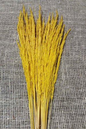 TRAWA LEŚNA KOLOR ŻÓŁTY trawa suszona barwiona do stroików